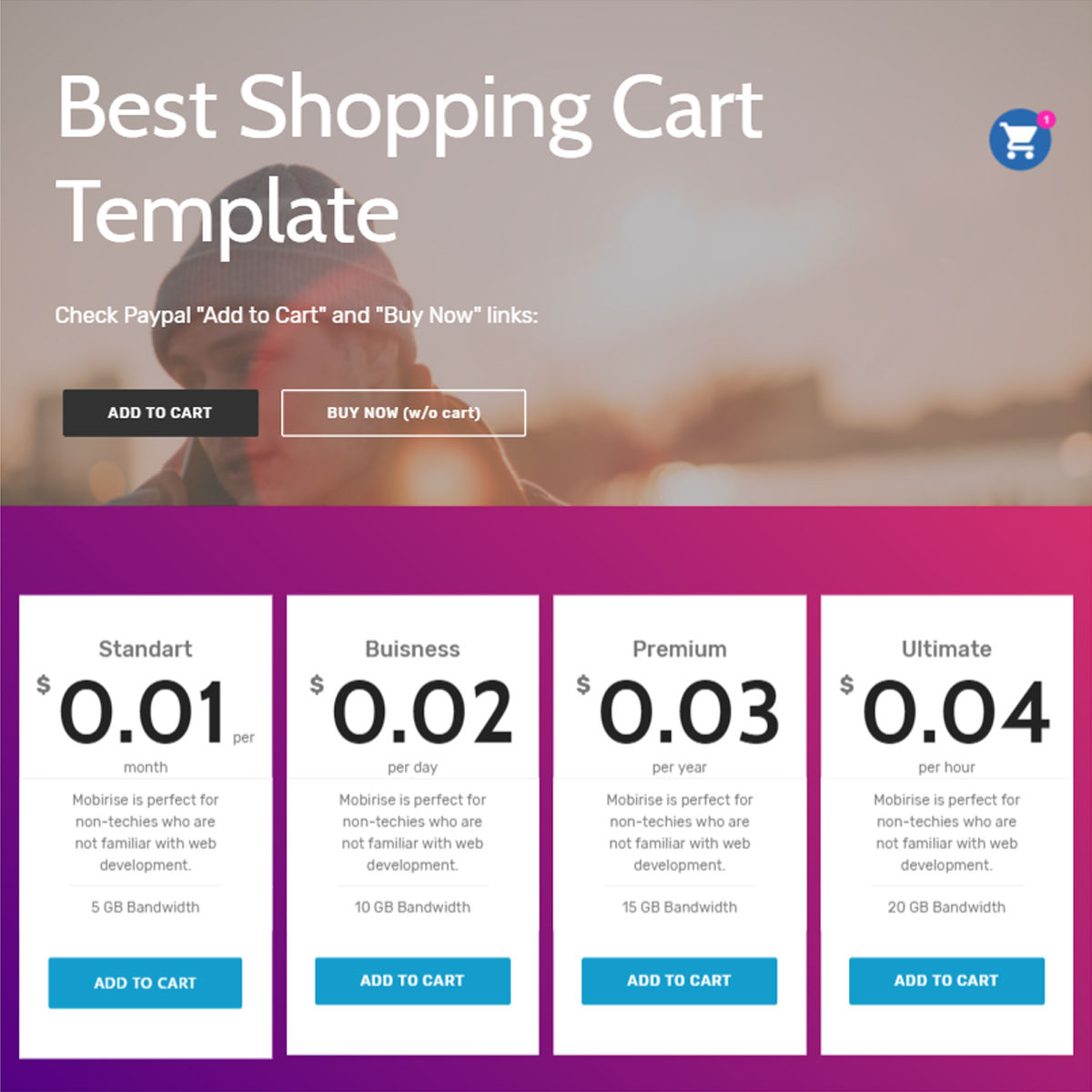 CSS3 Bootstrap  Shopping Cart  Templates