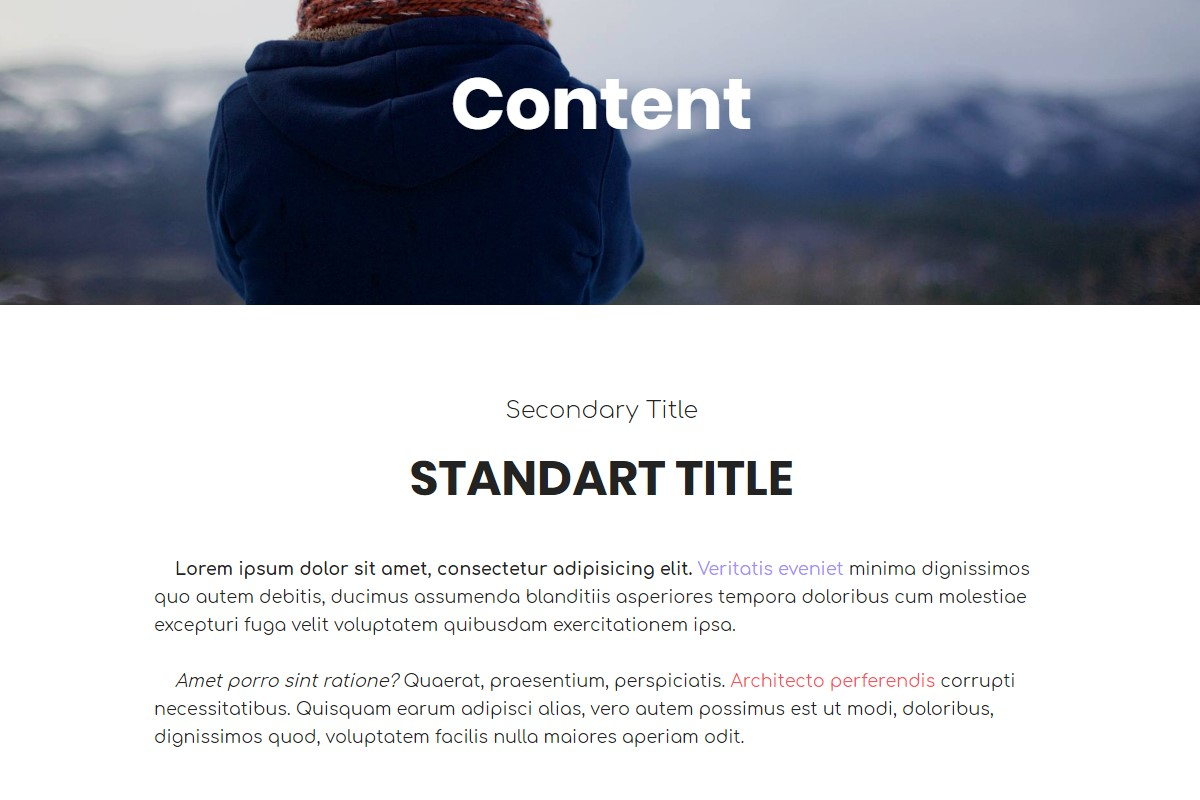 HTML Professional Templates