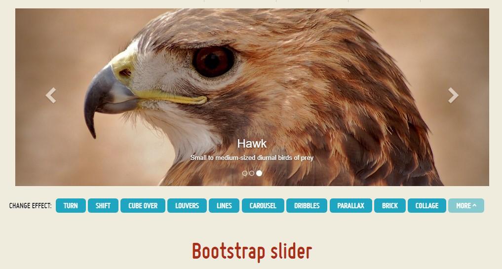 Bootstrap Gallery Slider